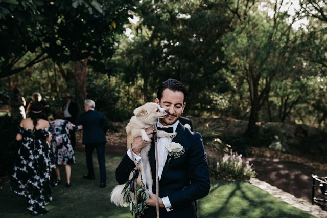 320 Dog Wedding Ceremony Perth Ashleigh Jade