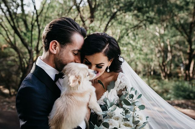 321 Dog Wedding Ceremony Perth Ashleigh Jade