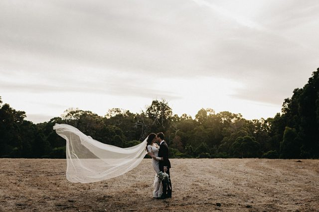 331 Bride Veil Pallas Couture Wind Field Ashleigh Jade